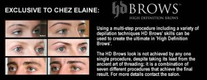 HD Brows at Chez Elaine